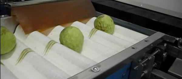 "Calibrador de Fruta (""Delicado"") almeria"